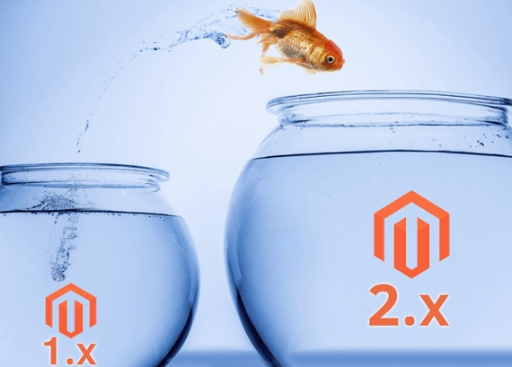 Migrate to Magento
