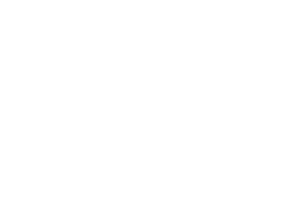 Code Audit / Bug Fixing